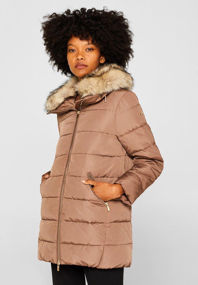 Esprit Collection - MIT 3M® THINSULATE-FÜLLUNG - Winter jacket - brown