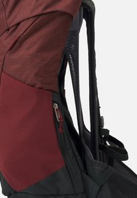Deuter - AC LITE 24 UNISEX - Backpack - redwood/ivy - 4