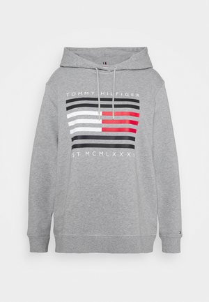 REGULAR FLAG HOODIE - Hoodie - light grey