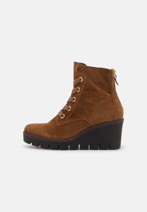 Lace-up ankle boots - cognac/gold