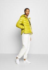 Nike Sportswear - Down jacket - tent/tea tree mist - 1
