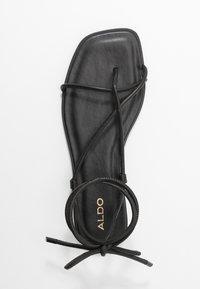 ALDO - OITA - Tongs - black - 3