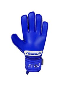 Reusch - Goalkeeping gloves - blau - 2