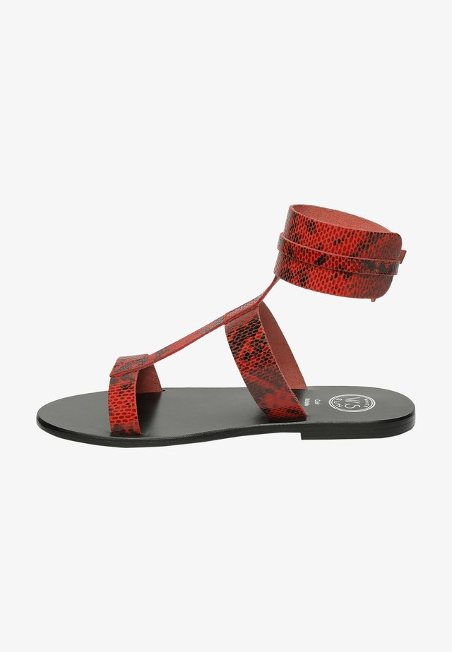 BARCARI - Sandales classiques / Spartiates - red