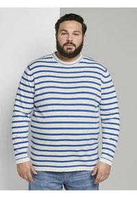 TOM TAILOR MEN PLUS - Jumper - white victory blue stripe - 0