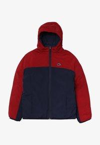 Lacoste - BLOUSON - Winter jacket - bordeaux/navy blue - 2