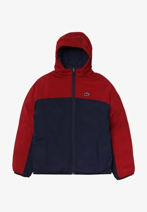 BLOUSON - Winter jacket - bordeaux/navy blue