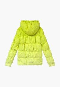 Icepeak - KIANA - Winter jacket - aloe - 1