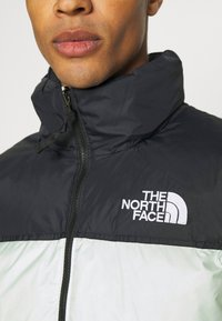 The North Face - RETRO UNISEX - Down jacket - green mist - 4