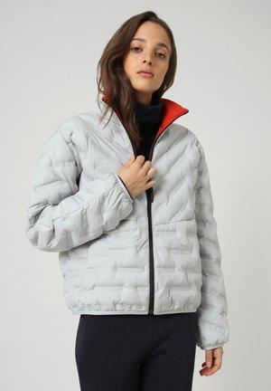 A-ALVAR - Winter jacket - grey harbor