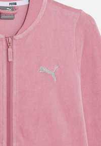 Puma - ALPHA VELVET FULL-ZIP - Zip-up hoodie - foxglove - 2