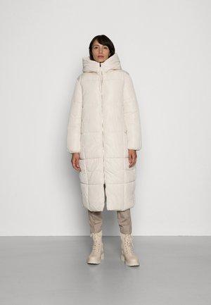 Winter coat - ice