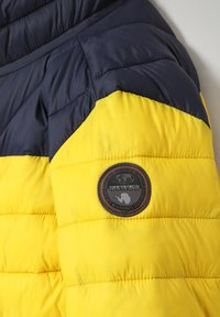 Napapijri - AERONS - Winter jacket - yellow oil - 2