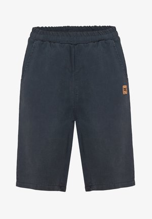 Sports shorts - titanium