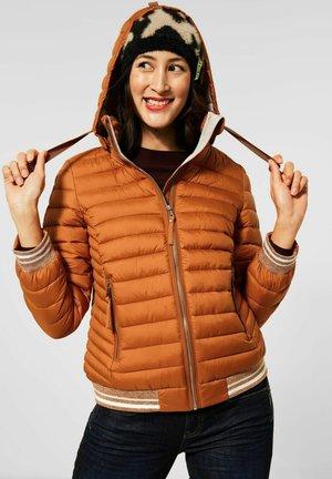 MIT KAPUZE - Winter jacket - braun