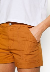 Patagonia - STAND UP - Urheilushortsit - umber brown - 3