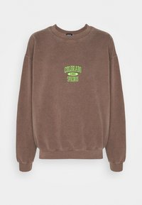 BDG Urban Outfitters - COLORADO SPRINGS CREWNECK - Sweatshirt - brown - 4