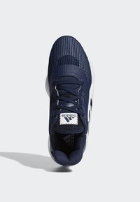 adidas Performance - PRO BOUNCE 2019 LOW SHOES - Basketball shoes - blue - 2