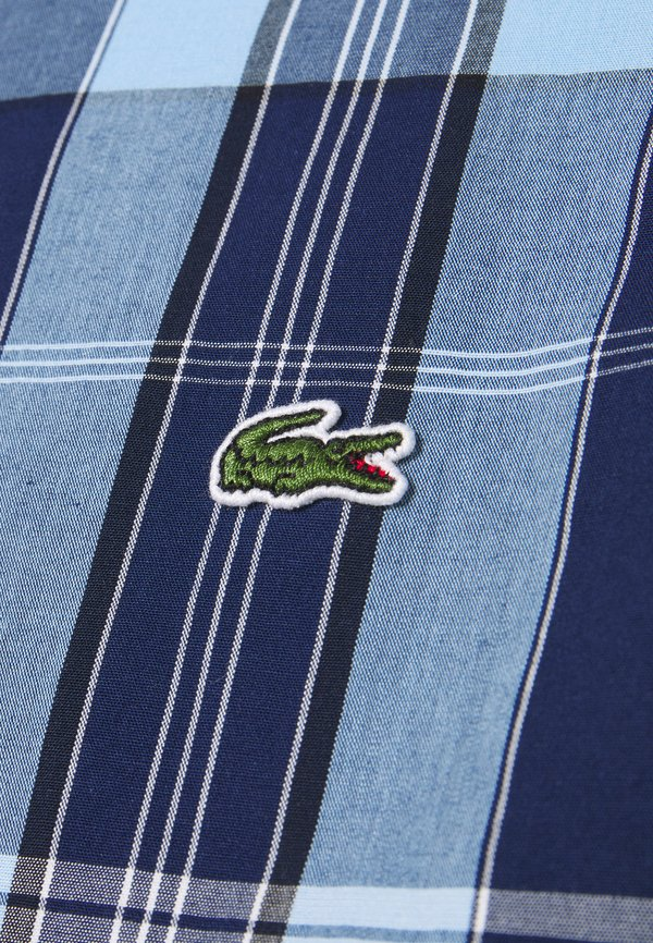 Lacoste Koszula - scille/nattier blue/granatowy Odzież Męska ABUD