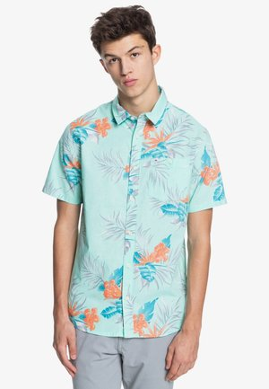 PARADISE EXPRESS - Shirt - cabbage paradise express