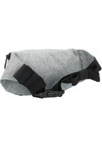 Dakine - Bum bag - greyscale - 1