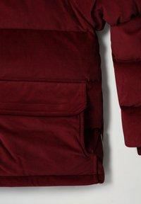 Napapijri - A-KAMPPI - Winter jacket - vint amarant - 4