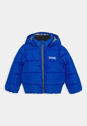 NMMMILTON PUFFER - Winter jacket - skydiver