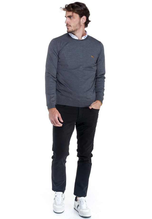 PARICOLLO TOTAL EASY CARE - Sweatshirt - grigio scuro
