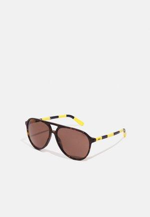 Sunglasses - shiny dark havana