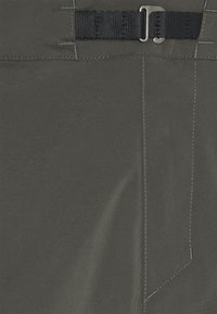Houdini - WADI SHORTS - Shorts outdoor - green - 2