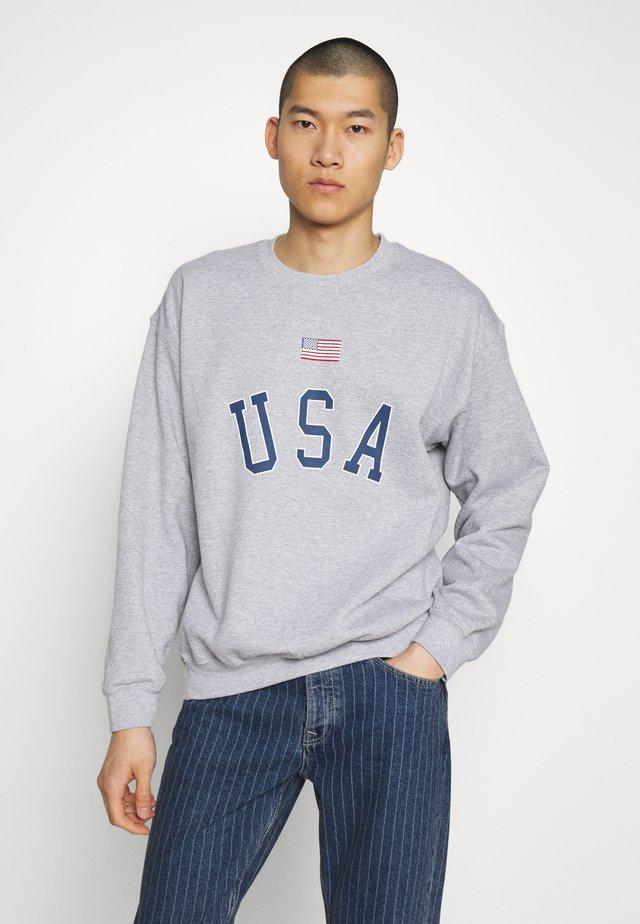 USA FLAG PRINT - Sweater - grey