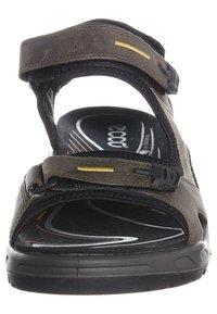 ECCO - OFFROAD - Walking sandals - tarmac - 3