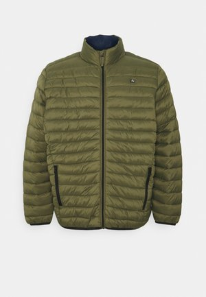 OUTERWEAR - Light jacket - winter moss