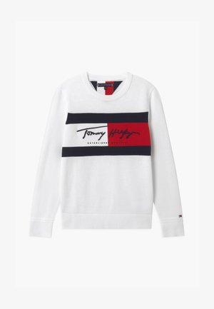 SIGNATURE FLAG  - Jumper - ivory petal