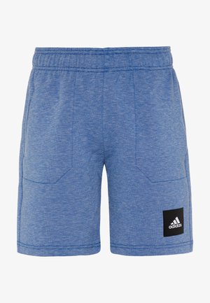 Sports shorts - blue melange