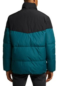 edc by Esprit - Winter jacket - dark teal green - 4