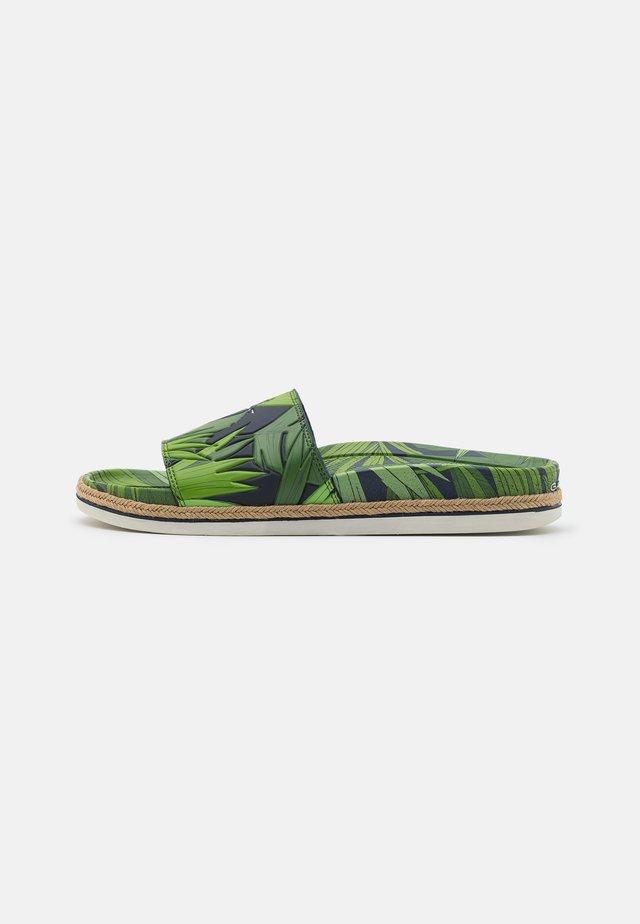 BEACHROCK SPORT - Klapki - green