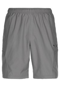 Puma - FIRST MILE 2IN1 PANT - Tracksuit bottoms - castle rock - 3