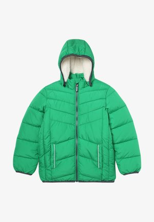 NKMMUS - Winter jacket - jolly green