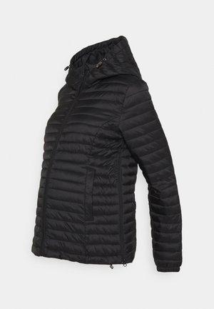 HALIDA PADDED COAT - Vinterjakke - black