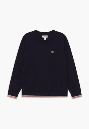 Jumper - navy blue/silver chine-corrida
