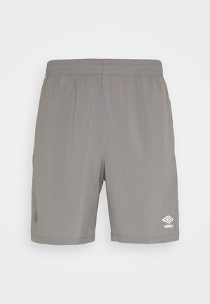 TRAINING  - Sports shorts - frost gray