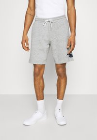 Hollister Co. - EXPLODED ICON - Shorts - grey - 0