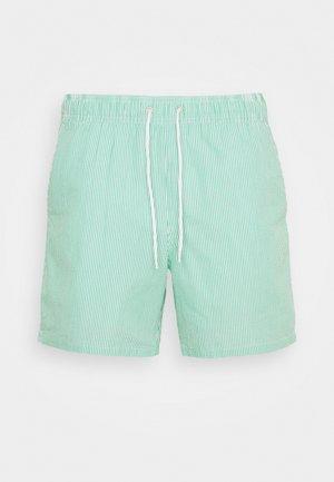 TRUNK - Short de bain - green white