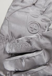 Barts - BASIC SKIGLOVES - Rukavice - silver - 3
