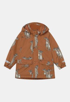 MINI UNISEX - Winter jacket - brown