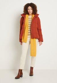 TOM TAILOR DENIM - Zimní bunda - rust orange - 1