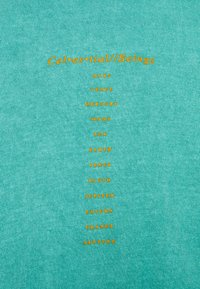 BDG Urban Outfitters - CELESTIAL TEE UNISEX - Print T-shirt - green - 6