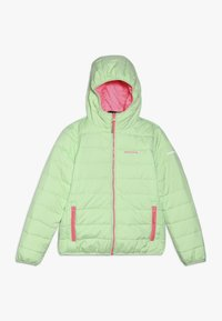 Icepeak - KLINE - Winter jacket - aloe - 0