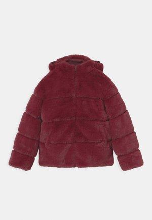 Down jacket - brule